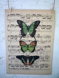 colorful butterflies printed on sheet music