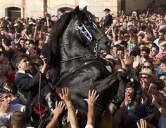Ciutadella, Isole Baleari, Spagna  Un cavallo tra la folla, durante l'annuale festa di San Juan. La foto è del 23 giugno. (AFP PHOTO/ Jaime ...