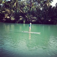 """@sophiesumner8's photo: """"And she's off!!!! #bahol #paddleboarding #tropic #travel #filming"""""""