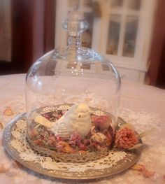 Bella's Rose Cottage: Bird Under Glass...