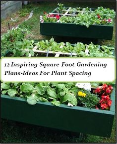 12 best plans and ideas for square foot garden-Guide for plant spacing