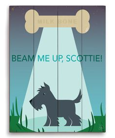 Look at this 'Beam Me Up Scottie' Wall Art on #zulily today!