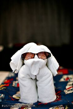 What they make out of towels and washcloths on cruise ships!
