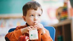 Poverty And Hunger, Vegan Milk, Milk Dairy, Artificial Food Coloring, School Breakfast, Plant Based Milk, Weight Loss Supplements, Kids Nutrition, Alternative Medicine