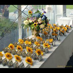 modern sunflower wedding theme   Wedding Decor: Escort Card Table Displays