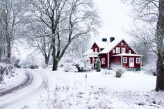 Perfect red cottage in the snow