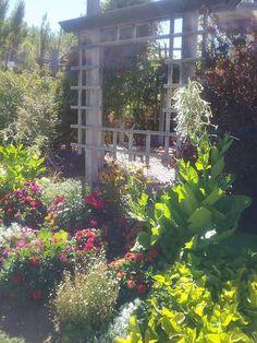 Ogden Botanical Gardens | Ogden, Utah Botanical Gardens | Pinterest |  Gardens