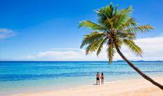 6 Day Deluxe Fiji Honeymoon: Denarau & Tokoriki Islands: 7 nights hotel, dinner cruise, bkfst, honeymoon bonus & more.  Travelscene.com