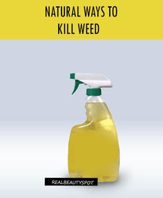 BEST NATURAL WAYS TO KILL WEED