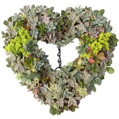 Make your own succulent wreath or succulent ball