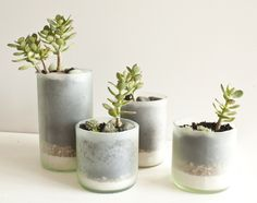 Recycled wine bottles - used to plant succulents.  Bet these would be pretty easy to DIY.
