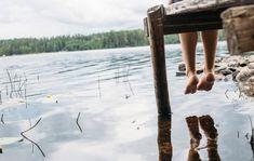 Luonnonkukat Suomessa – testaa, kuinka monta tunnistat!   Anna.fi Anna, Mountains, Nature, Travel, Historia, Naturaleza, Viajes, Destinations, Traveling