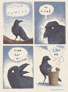 The Crow is Tired [Comic] Cute Comics, Funny Comics, Crows Ravens, Freundlich, Bird Art, Art Reference, Art Drawings, Illustration Art, Cute Animals