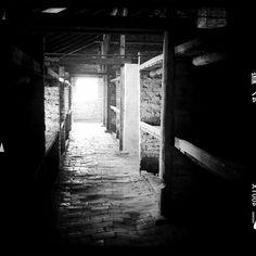 Auschwitz Birkenau by Auschwitz Study Group member Frank Oddbjorn Sandbye-Rudd