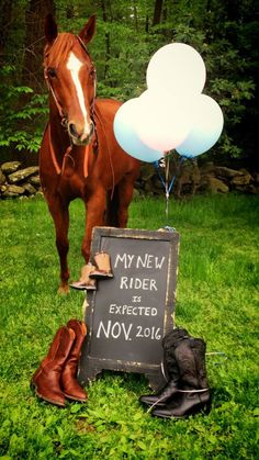 Country equine horse Baby announcement