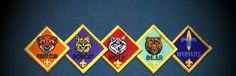 Libertyville Cub Scouts & Webelos Pack 71   Learning, camping, field trips & special events, Pinewood Derby, serving our community & the people who live here.