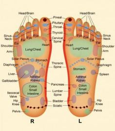 foot-reflexology-e1371677181184-600x686