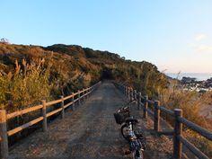 2013年の2月末の朝、和歌山県東牟婁郡太地町を旅した時に撮った一枚です。  梶取崎から燈明崎へと向かう遊歩道の途中で撮影しました。