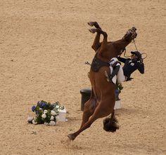 Pentathlon Horse Fall     Horse Training Secrets Revealed