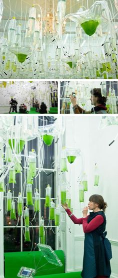 H.O.R.T.U.S., a cyber greenhouse, Claudia Pasquero & Marco Poletto (EcoLogic).    A sci-fi 'greenhouse' in which 325 transparent photobioreactor bags containing nine different species of algae have taken the place of traditional plants. Visitors blow into plastic tubes to help the algae grow.