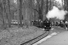 Parkeisenbahn am Auensee Leipzig Pictures, Post War Era, Human Settlement, Leipzig, Monochrome, History, World, Photos, Grimm