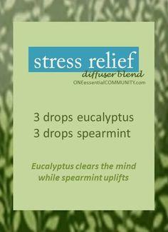 stress relief eucalyptus spearmint diffuser blend-- Plus 15 more SPRING DIFFUSER BLENDS