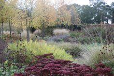 Oudolf ~ Scampston Hall, Walled Garden, Malton, North Yorkshire, UK.  _/\/\/\/\/\_