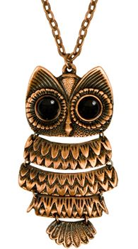 love owls <3   http://www.ladiesgadgets.com/wp-content/uploads/2009/07/Beautiful-Owl-Pendant-From-fredflare.jpg