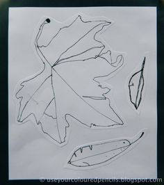 Observational Leaf Drawings- I can't believe these were made by 1st graders!