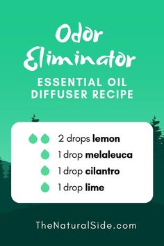 21 Beginner Friendly Essential Oil Combinations for Diffuser New to Essential Oils? Searching for Simple Essential Oil Combinations for Diffuser? Check out these 21 Easy Essential Oil Blends and Essential Oil Recipes Perfect for Beginners. Essential Oils For Colds, Essential Oil Diffuser Blends, Young Living Essential Oils, Perfume Diesel, Essential Oil Combinations, Healing Oils, Diffuser Recipes, Simple, Essential Oils