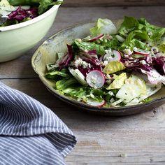 Chicor-Anchovi-Salat_featured