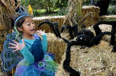 Boo at the BRONX ZOO- a Howlingly good Halloween Extravaganza for the whole family! http://www.thestatenislandfamily.com/boo-at-the-bronx-zoo-a-howlingly-good-halloween-extravaganza-for-the-whole-family/