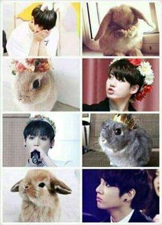 Memes y cómics yaoi - Mi Animal Interior Jungkook Lindo, Jungkook Fanart, Jungkook Cute, Jungkook Oppa, Bts Bangtan Boy, Memes Gifs, Funny Memes, Foto Bts, Bts Photo