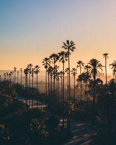Los Angeles California by @thaskoundrel | CaliforniaFeelings.com #california #cali #LA #CA #SF