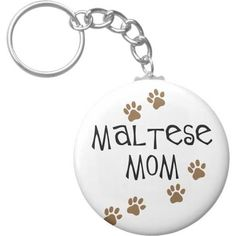mother of maltese - Google Search