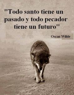 Drogas Wolf Warriors, Wolf Life, Quotes En Espanol, Wolf Quotes, Wolf Pictures, My Philosophy, New Thought, Oscar Wilde, Spanish Quotes