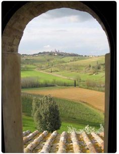 Ah, #Tuscany!  33% urban, 33% wild, 34% vineyards... #wine, gelato and pizza...perfection!