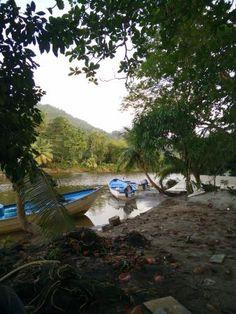 Acajou Hotel (Trinidad/Grande Riviere) - Hotel Reviews - TripAdvisor