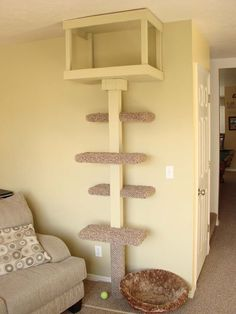 Get Scatty: A Cat Tree, & A Christmas Tree.
