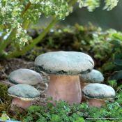 wonderful miniatures for sale, especially for a fairy garden