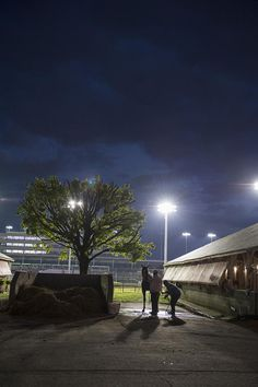Mornings on the Backside at Churchill Downs for the Kentucky Derby