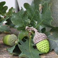 Op deze site staan allerlei gratis herfst haakpatronen (in het Nederlands), zoals eikels, paddenstoelen, pompoenen, etc.