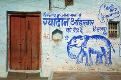 Once in a Blue Elephant