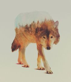 Double-exposure photos by Andreas Lie blend animals with habitat.