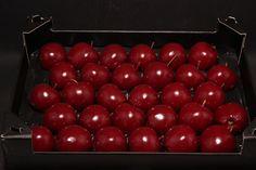 wax appel wijnrood