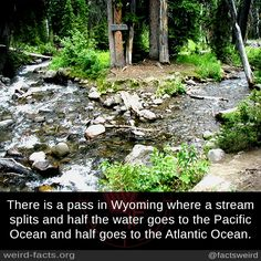 There is a pass in Wyoming where a stream splits and half the water goes to the Pacific Ocean and half goes to the Atlantic Ocean.