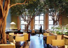 15 NYC Restaurants Worth The Splurge! They sound amazing!