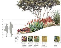 Garden in Winter - Design - Santa Monica Civic Center Parks