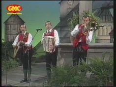 Stoakogler Trio - Steirermen san very good