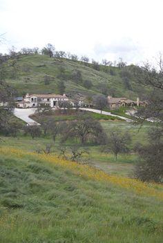 Beautiful Ventana Hills homes among the wildflowers.